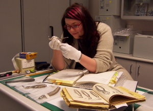 MCPP participant working on a cataloguing project at the Henry Forman Atkinson Dental Museum